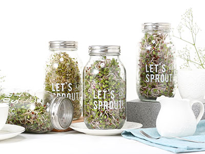 LET'S SPROUT!有機芽菜栽培組